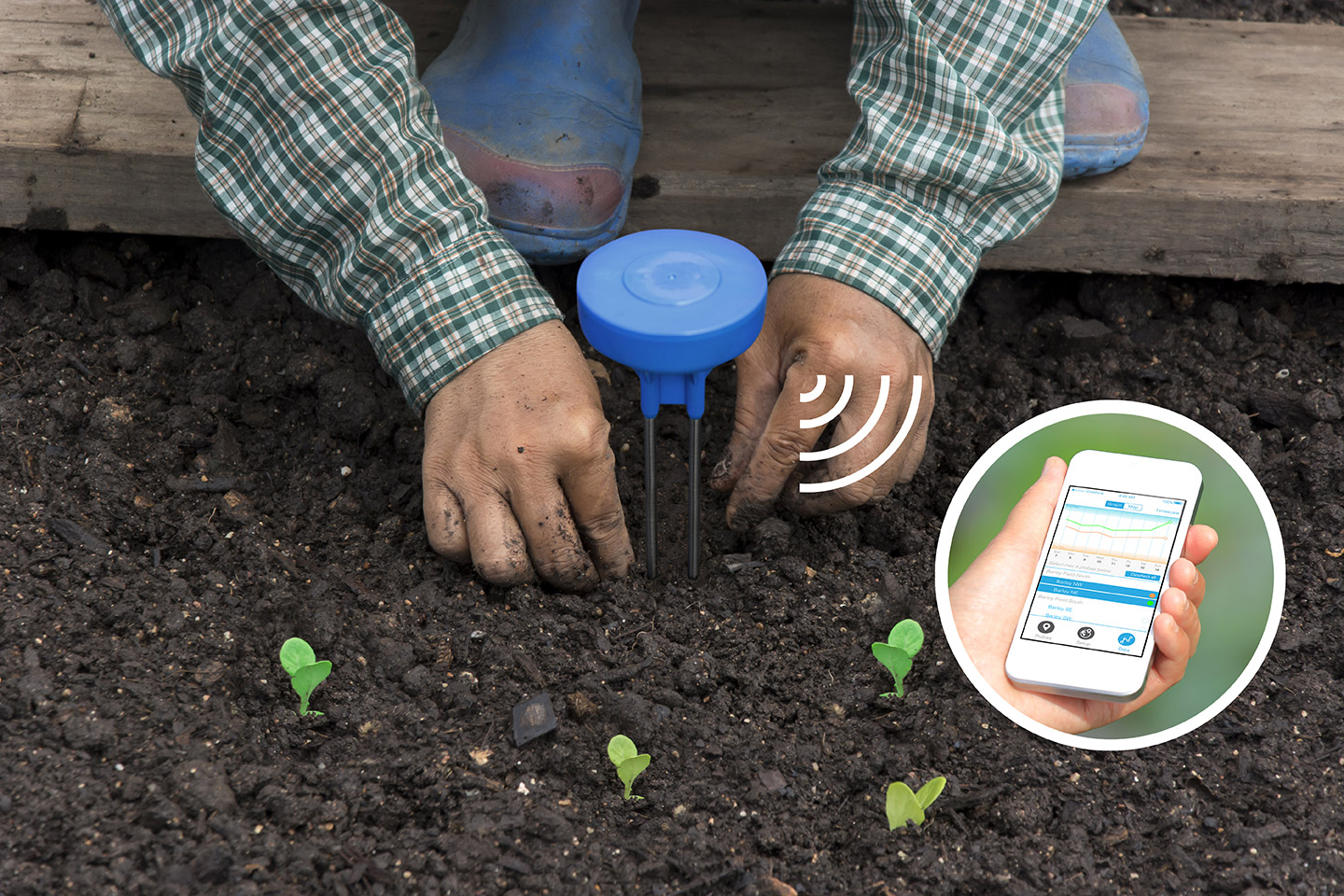 Wide Rollout of IoT Soil­Moisture Sensors in the Works