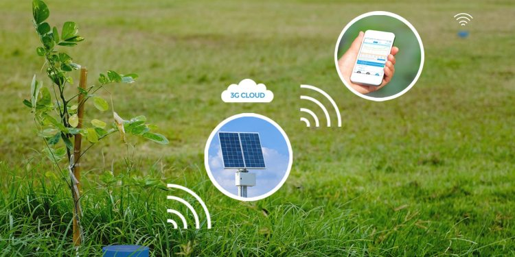 Sensoterra chooses Senet LPWA network for soil sensors
